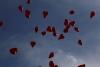 Tauben und Ballons zur Hochzeit Schloss Oberhausen 3   ©ihrehochzeitstauben