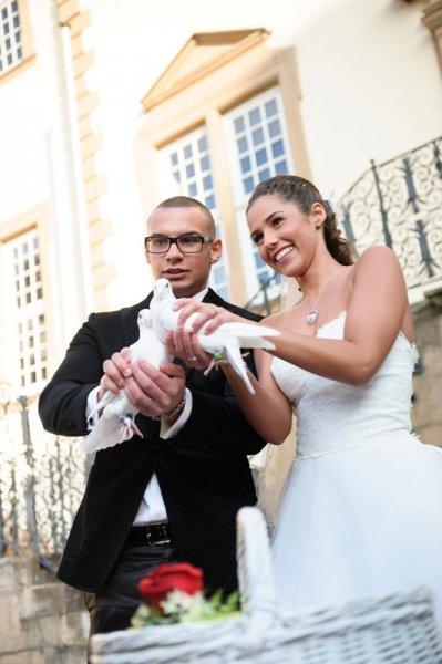 Hochzeitstauben bei Sarah und Pietro Lombardi 2 | ©kamermitherz