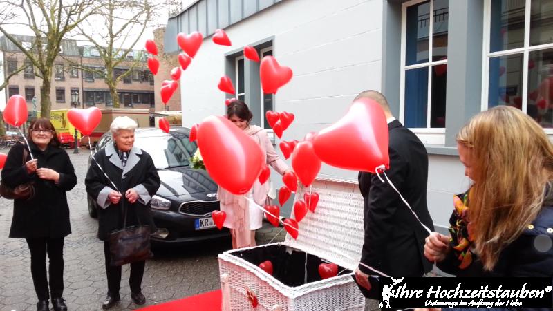Unser Ballonspecial - Ballons statt Tauben in Kempen 2   ©ihrehochzeitstauben