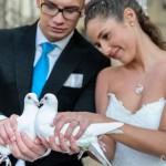 Hochzeitstauben bei Sarah und Pietro Lombardi 2 | ®Kamera mit Herz