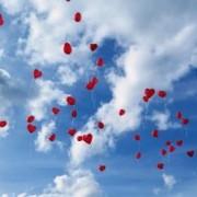 Das Ballonspecial - 2 Tauben für das Brautpaar und Ballons für die Hochzeits Gäste