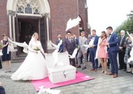 Tauben zur Hochzeit in Heinsberg Bild 1