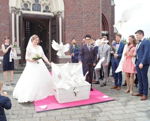Tauben zur Hochzeit in Heinsberg Bild 2