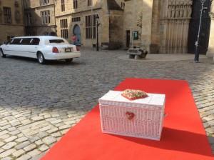 Hochzeitstauben in Osnabrück