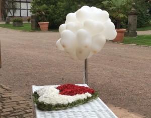 Hochzeitstauben Idensen Wunstorf bei Hannover
