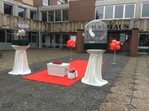 Hochzeitstauben in Ibbenbüren