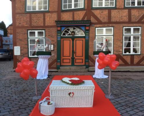 Hochzeitstauben in Lütjenburg
