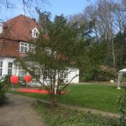Hochzeitstauben in Achim bei Bremen