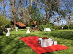 Weiße Hochzeitstauben in Butjadingen Seeverns Melkhus am Jadebusen