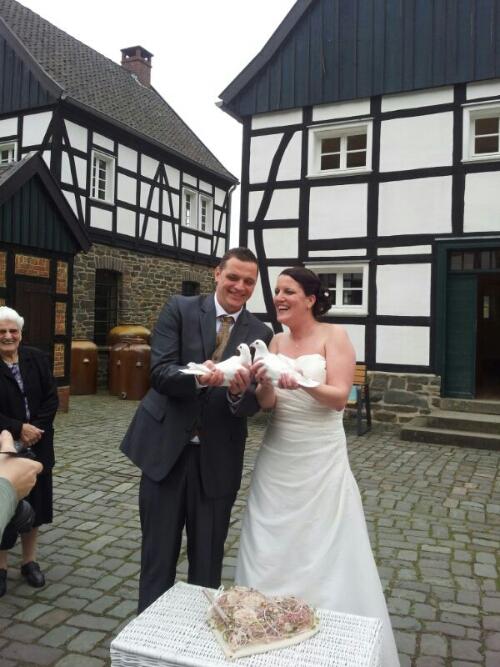 Hagen Archives Ihre Hochzeitstauben Die Profis Fur Ihre Hochzeit